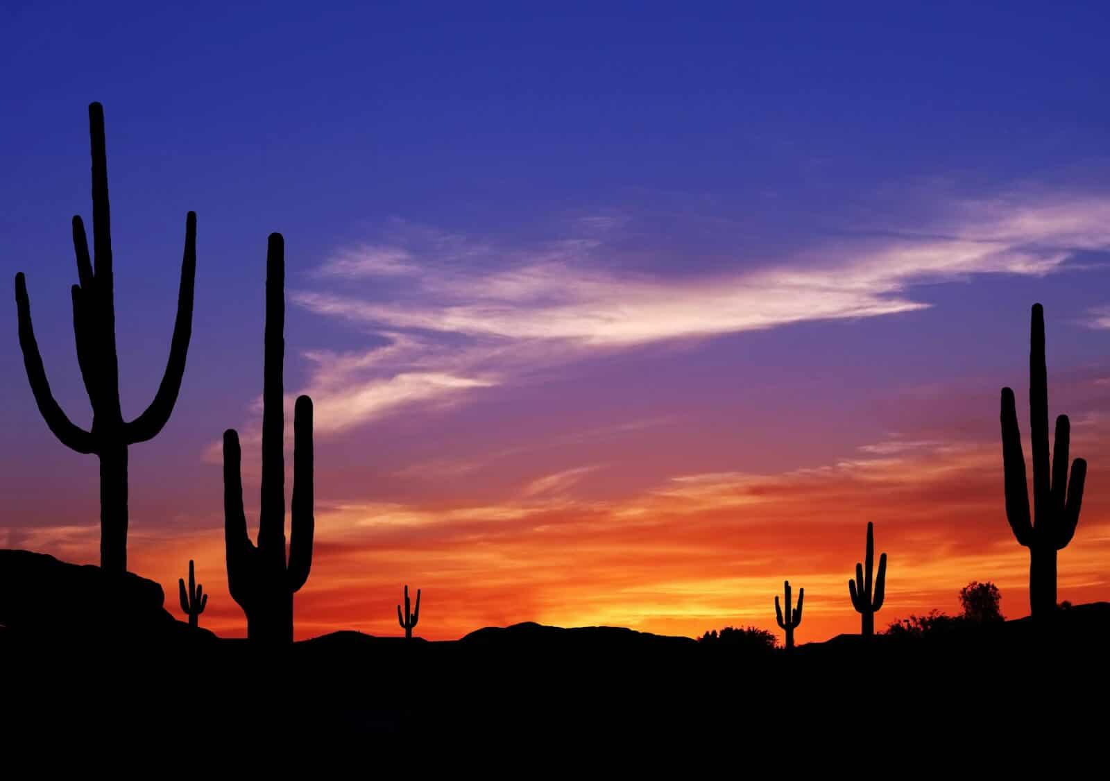 Addiction Treatment in Arizona