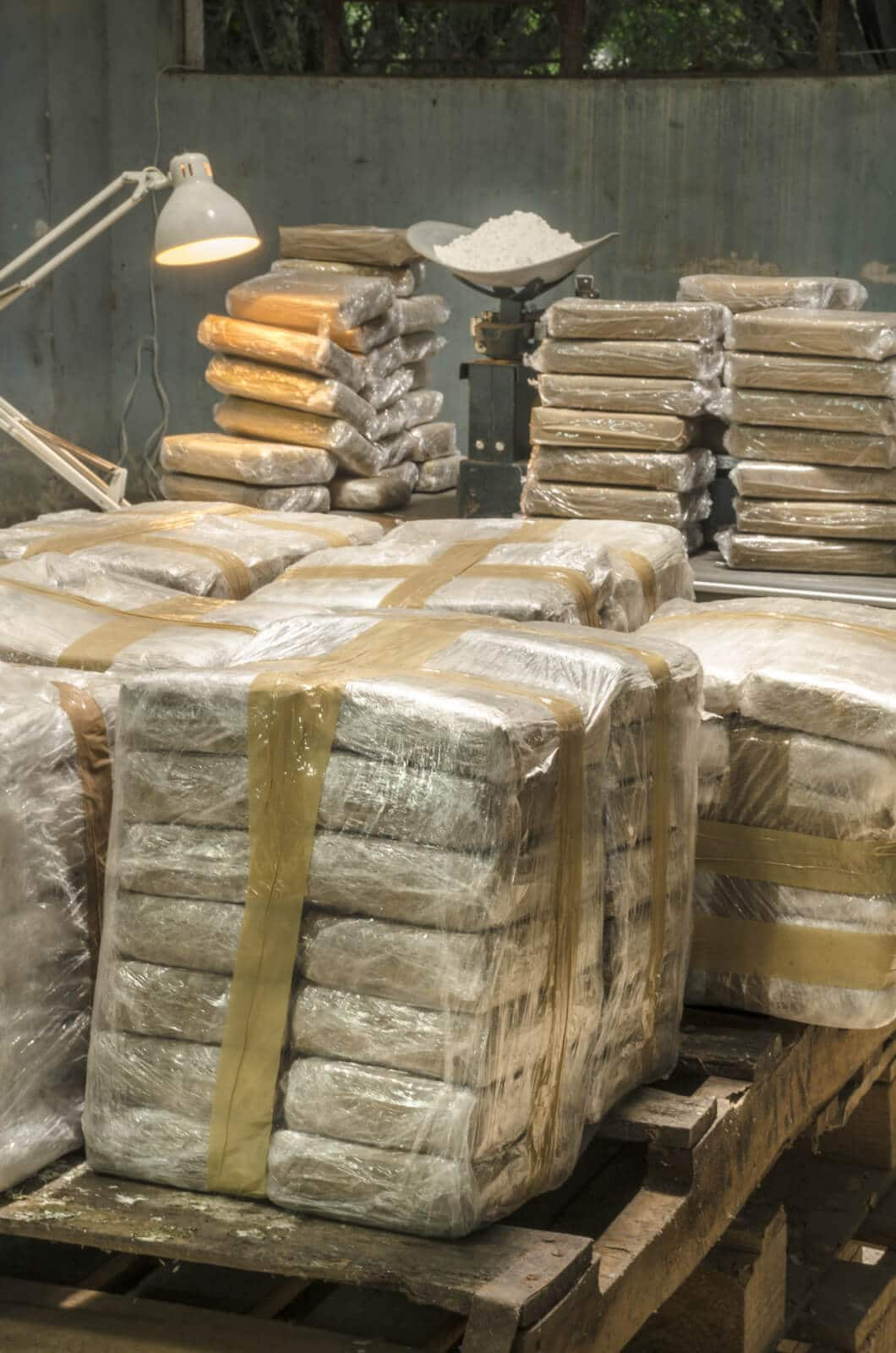 Thumnail photo of Authorities Confiscate 16 Tons of Cocaine From Cargo Ship in Philadelphia