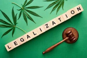 Thumnail photo of Marijuana Legalization May Influence Election